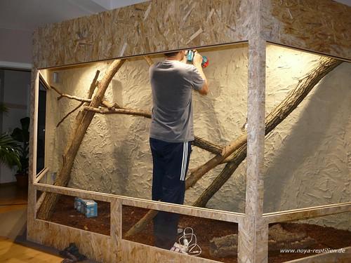 Terrarienbau noya reptilien - Terrarium ruckwand selber bauen ...